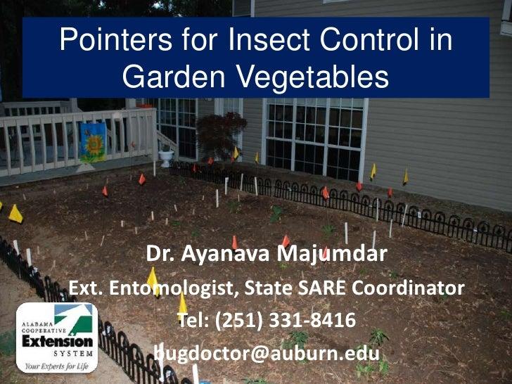 Ayanava HG presentation 13 april 2010