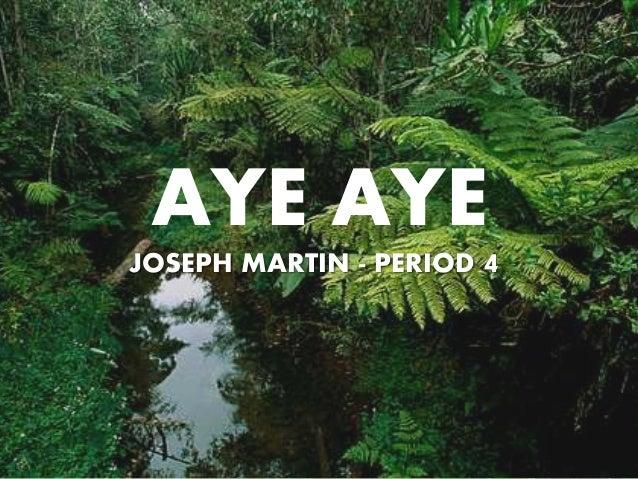 AYE AYE JOSEPH MARTIN - PERIOD 4
