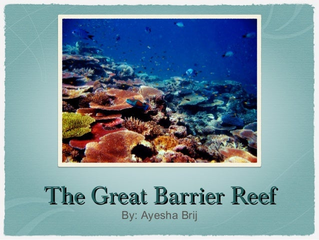 Ayesha's Presentation on the Great Barrier Reef
