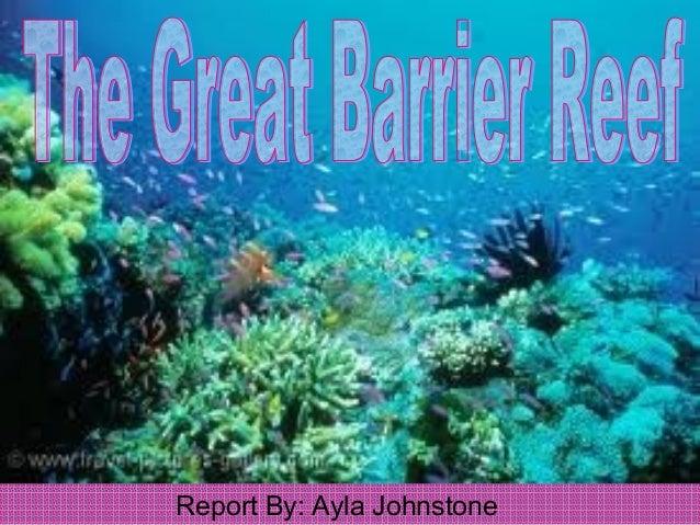 Ayla gr8 barrier reef slide show