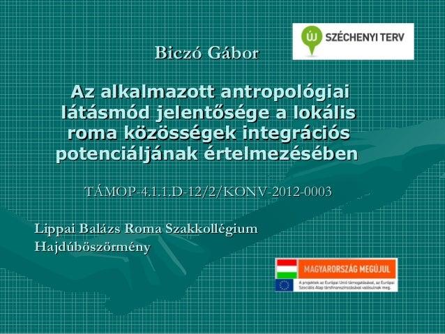 Az alkalmazott antropológiai látásmód jelentősége a lokális roma közösségek integrációs potenciáljának értelmezésében