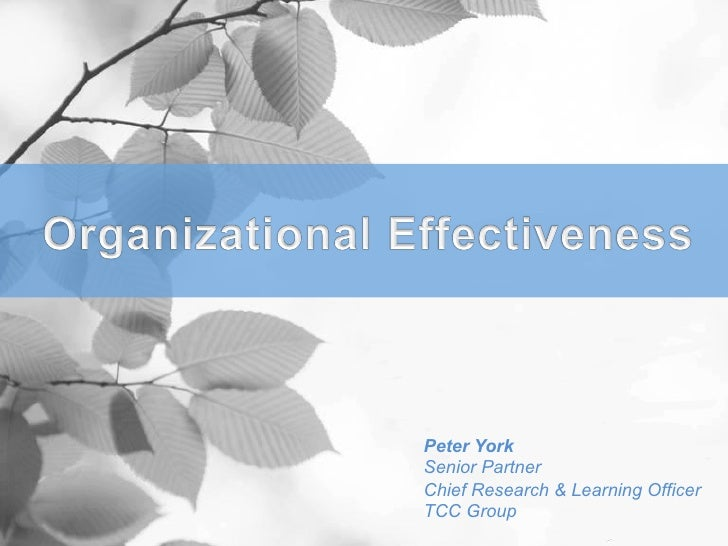 Peter YorkSenior PartnerChief Research & Learning OfficerTCC Group