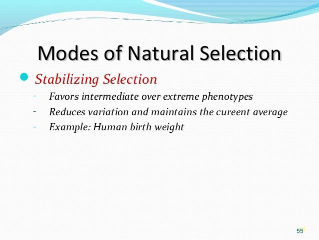 Natural Selection That Favors Extreme Over Intermediate Phenotypes
