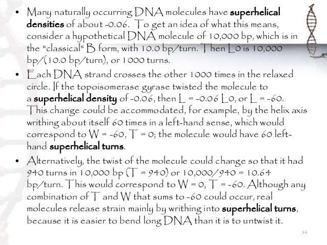 Montessori Philosophy Essay Paper - image 3