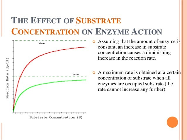 effect of substrate concentration on enzyme activity experiment