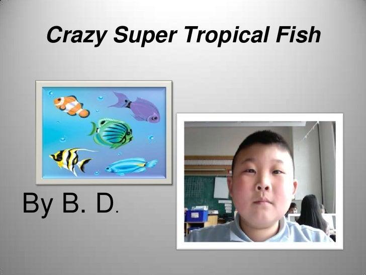 Crazy Super Tropical Fish<br />By B. D.<br />