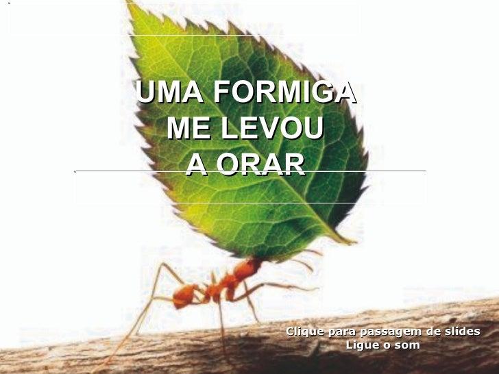B.Esp. Aprendendo Orar Com Formigas