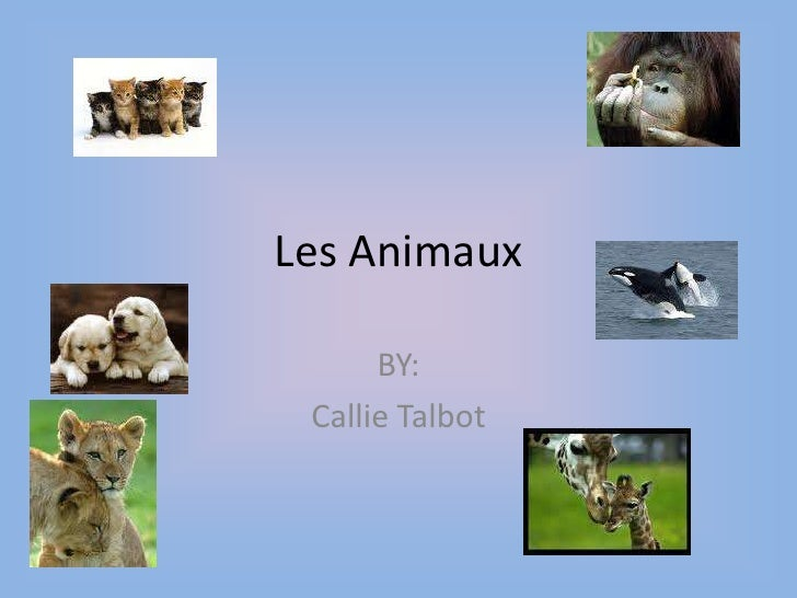 Les Animaux <br />BY:<br />Callie Talbot<br />