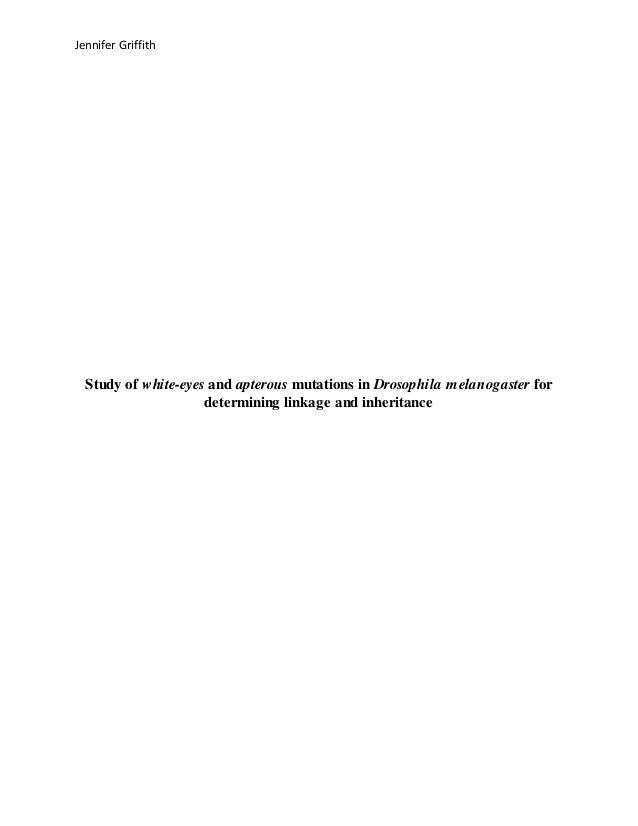 drosophila research paper Research paper a germline clone screen for meiotic mutants in drosophila melanogaster scott l page1,2 rachel j nielsen1.