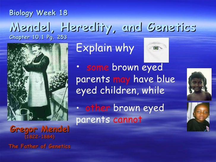 Biology Week 18Mendel, Heredity, and GeneticsChapter 10.1 Pg. 253                         Explain why                     ...