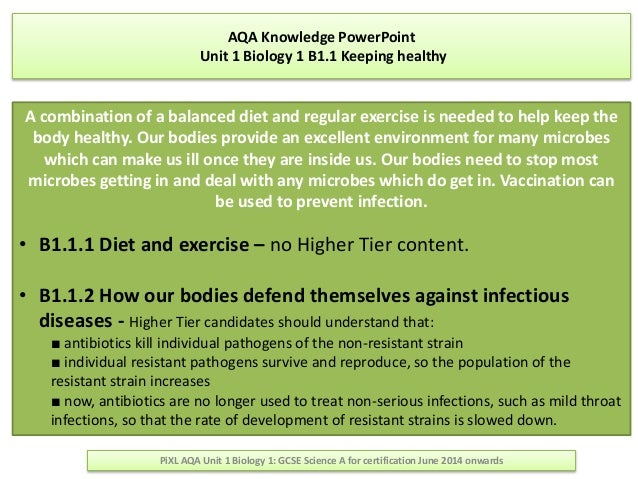 aqa biology past papers online Detailed, easy-to-follow a level biology revision notes for use with the latest aqa, ocr and edexcel specification.