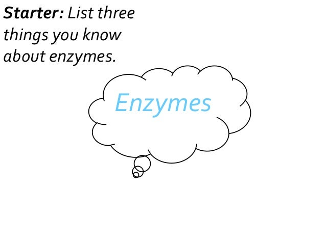 Starter: List three things you know about enzymes.  Enzymes