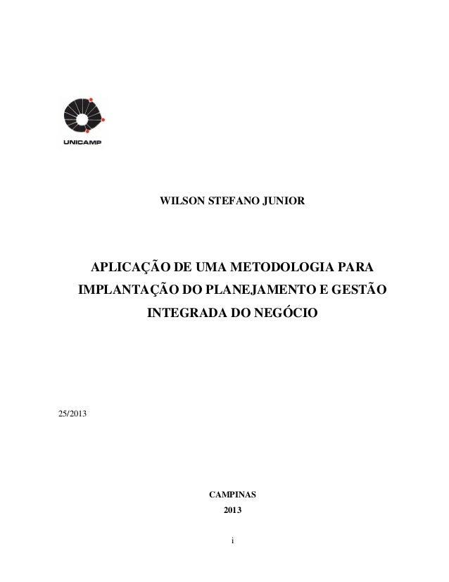 i WILSON STEFANO JUNIOR APLICAÇÃO DE UMA METODOLOGIA PARA IMPLANTAÇÃO DO PLANEJAMENTO E GESTÃO INTEGRADA DO NEGÓCIO 25/201...