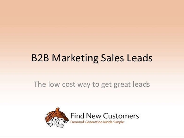 B2B Marketing Sales LeadsThe low cost way to get great leads
