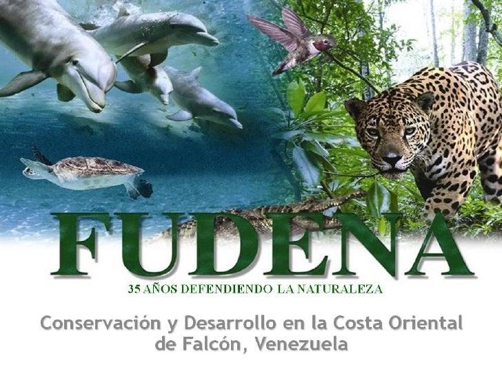"""Presentación realizada el 28 de octubre en el        Foro Biodiversidad 2010Proyecto """"Fortalecimiento y articulación delse..."""
