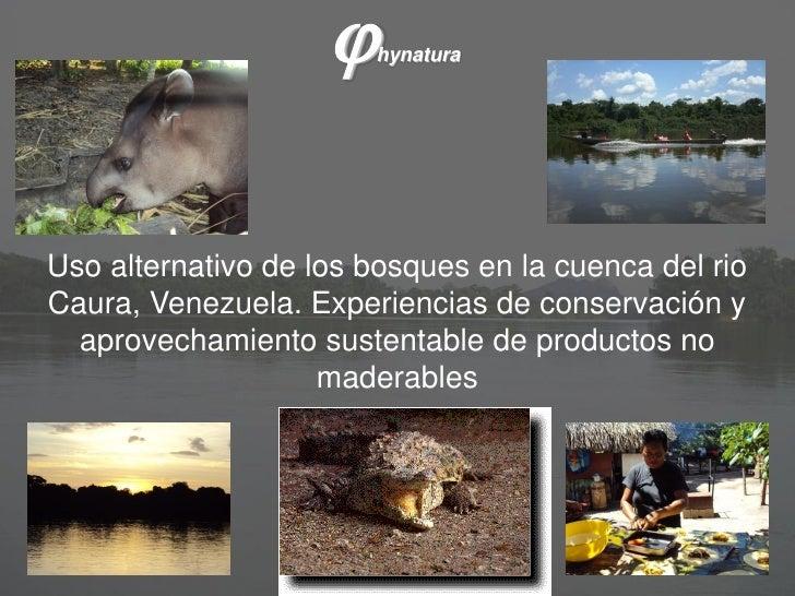 j   hynaturaUso alternativo de los bosques en la cuenca del rioCaura, Venezuela. Experiencias de conservación y  aprovecha...