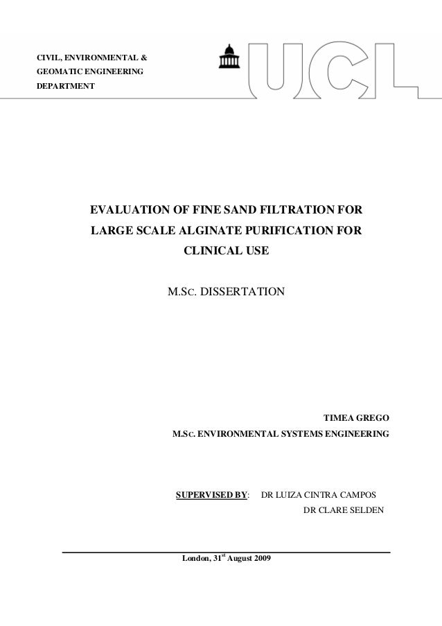 Dissertation On Environmental Economics