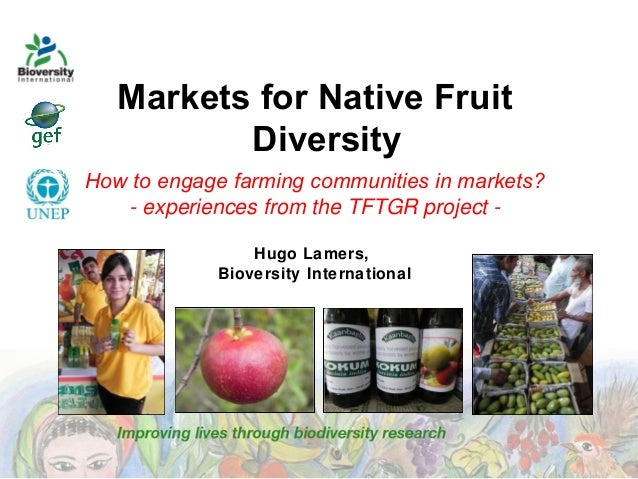 Markets for Native Fruit Diversity How to engage farming communities in markets? - experiences from the TFTGR project Hugo...