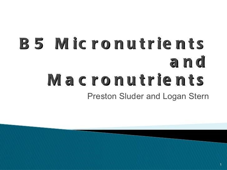 B5 Micronutrients and Macronutrients <ul><li>Preston Sluder and Logan Stern </li></ul>