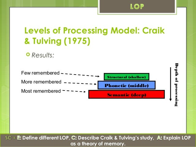 a study on recreating craik and lockharts levels of processing theory Levels of processing (f craik & r lockhart) the levels of processing framework was presented by craik & lockhart (1972) (1977) discuss the relationship between the dual coding theory and the levels of processing framework.