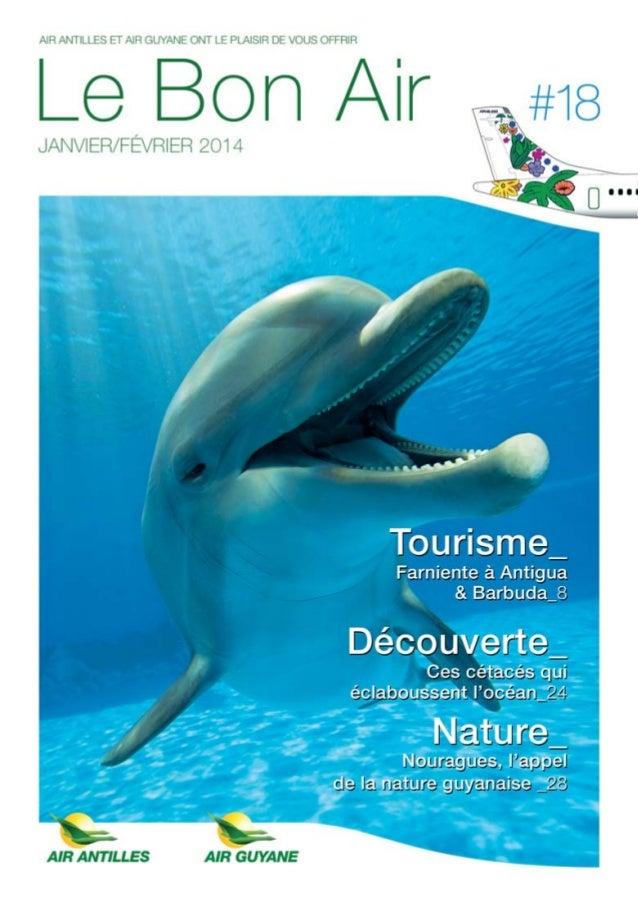 Le Bon Air Antilles & Guyane n°18 Janvier-Février 2014