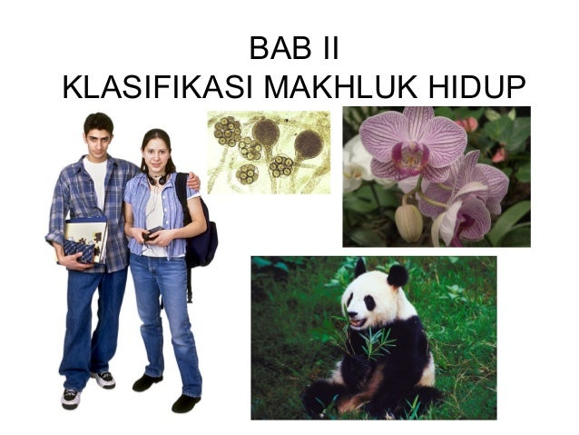 Bab 2 klasifikasi makhluk h