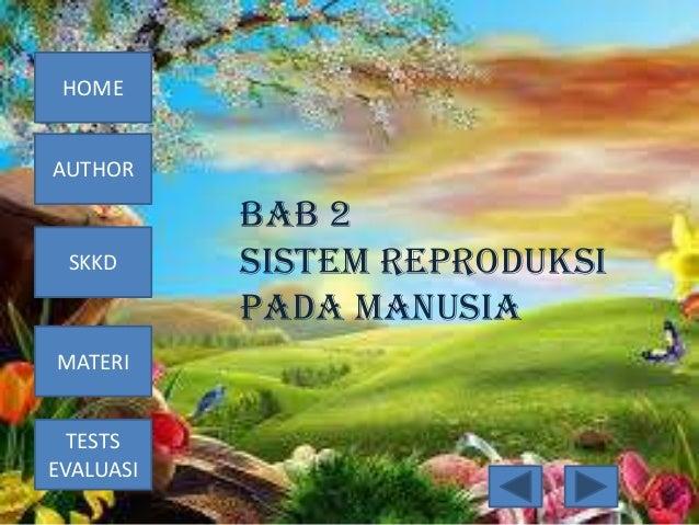 HOME  AUTHOR  SKKD  MATERI TESTS EVALUASI  BAB 2 SISTEM REPRODUKSI PADA MANUSIA