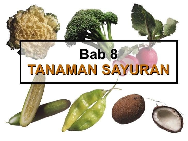 Bab 8 TANAMAN SAYURAN
