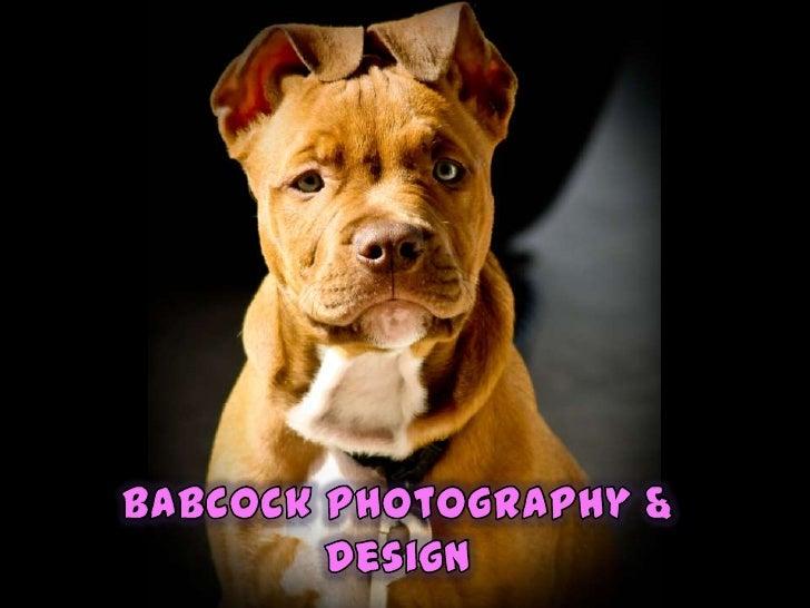 Babcock photography & design