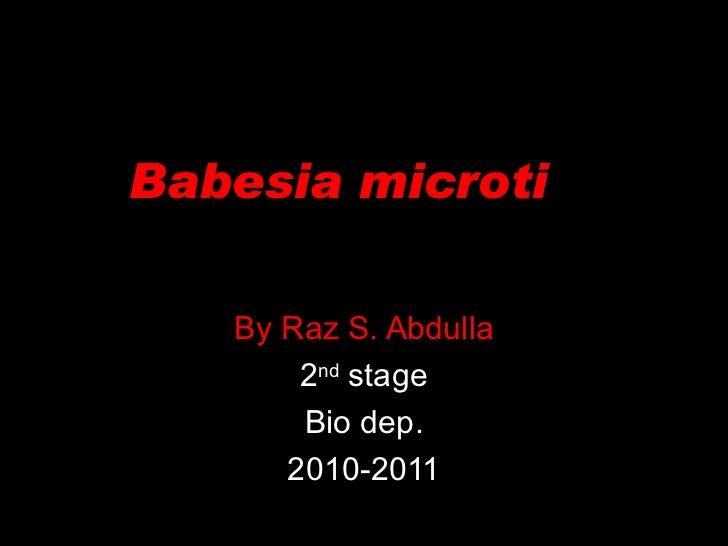 Babesia microti  By Raz S. Abdulla 2 nd  stage Bio dep. 2010-2011