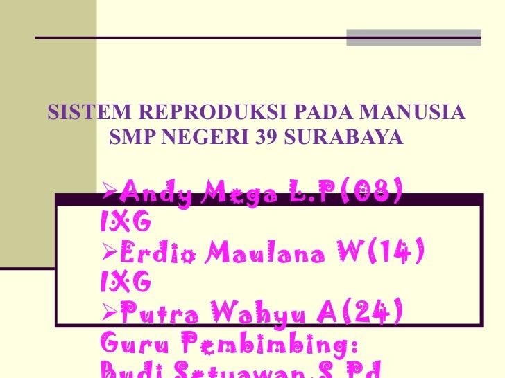 SISTEM REPRODUKSI PADA MANUSIA SMP NEGERI 39 SURABAYA <ul><li>Andy Mega L.P(08) IXG </li></ul><ul><li>Erdio Maulana W(14) ...