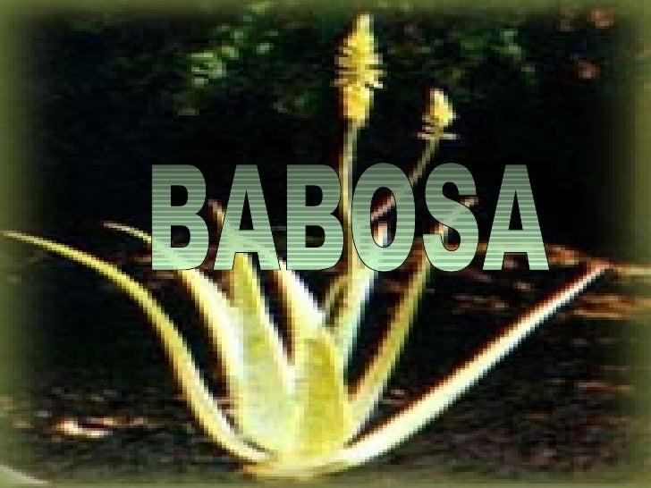 BABOSA