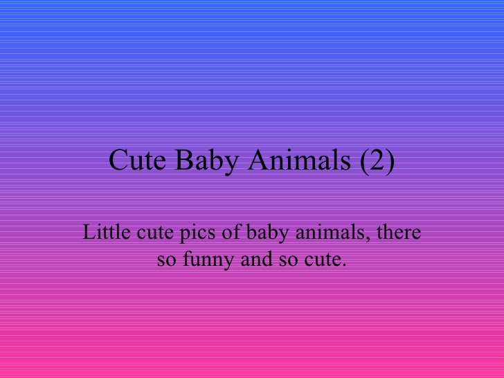 Cute Baby Animals (2) Little cute pics of baby animals, there so funny and so cute.