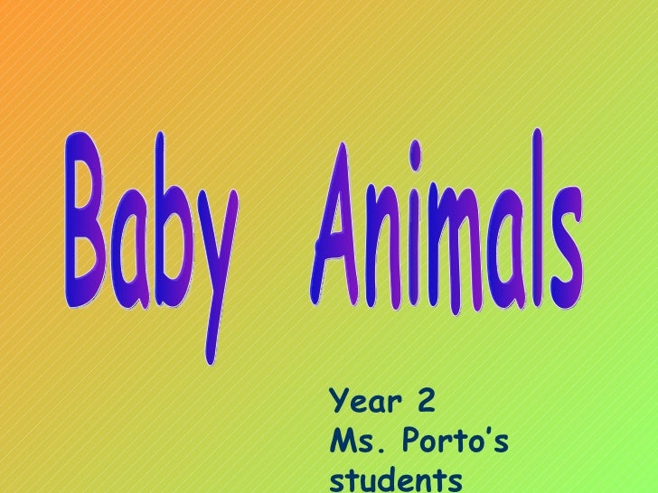 Baby  Animals Year 2 Ms. Porto's students