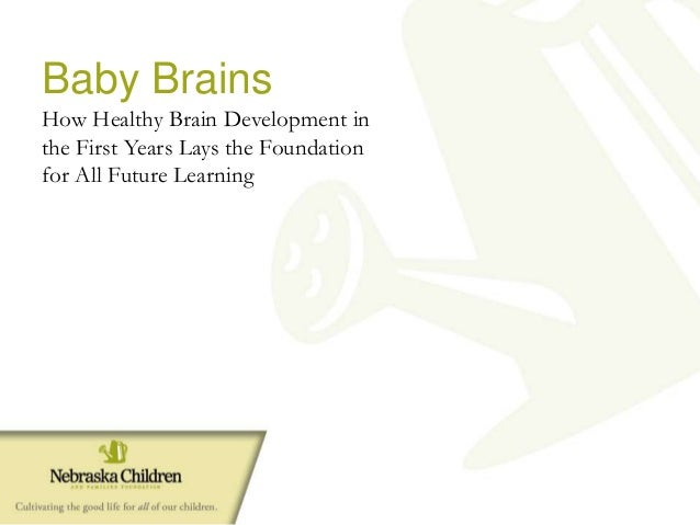 Baby Brains How Healthy Brain Development in the First Years Lays the Foundation for All Future Learning
