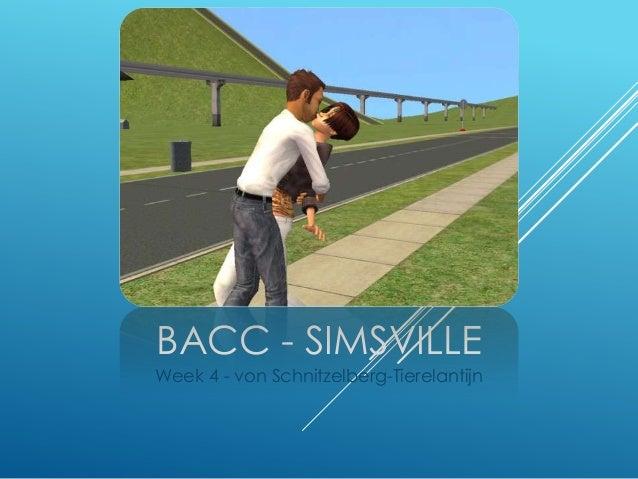 BaCC Simsville - Week4: von Schnitzelberg-Tierelantijn