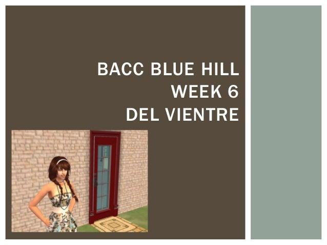 BACC BLUE HILLWEEK 6DEL VIENTRE
