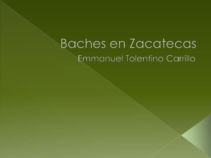 Baches en zacatecas