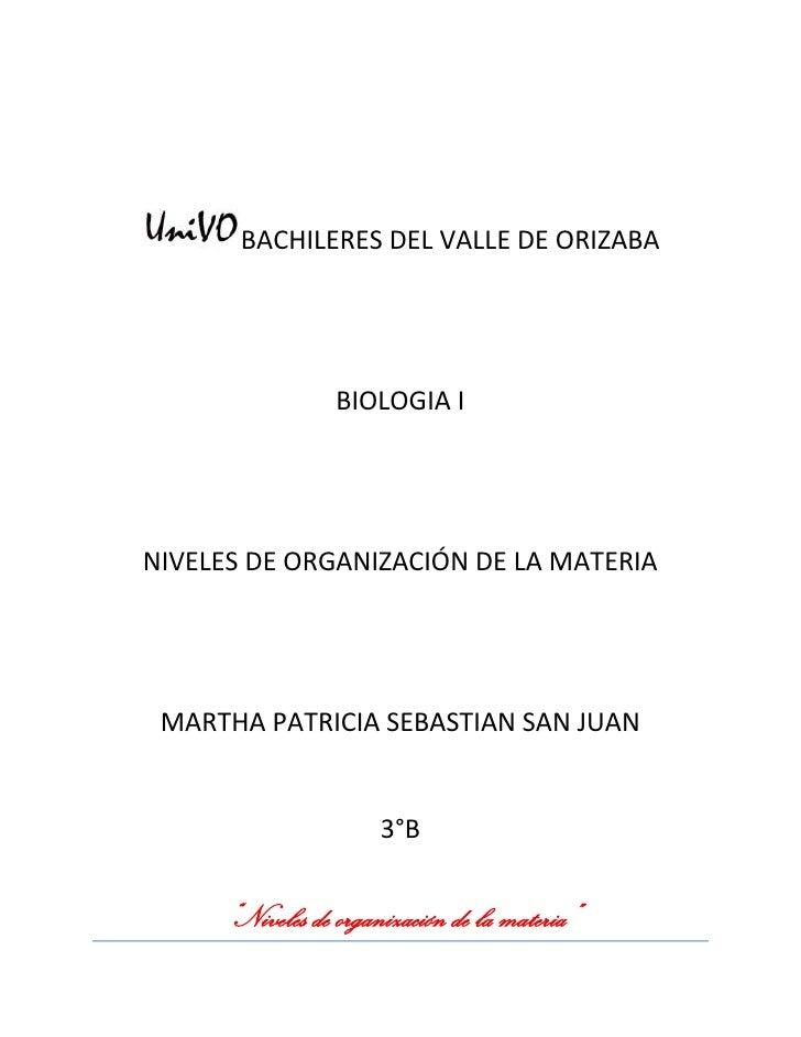 BACHILERES DEL VALLE DE ORIZABA<br />BIOLOGIA I<br />NIVELES DE ORGANIZACIÓN DE LA MATERIA<br />MARTHA PATRICIA SEBASTIAN ...