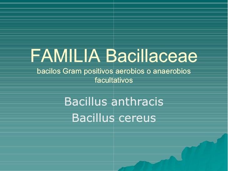 FAMILIABacillaceae bacilosGrampositivosaerobiosoanaerobios                 facultativos          Bacillusanthrac...