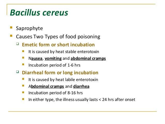 Bacillus Cereus Food Poisoning Onset