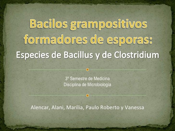 Alencar, Alani, Marília, Paulo Roberto y Vanessa 3º Semestre de Medicina Disciplina de Microbiología