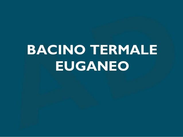 Bacino termale euganeo analisi consorzio aquaehotels
