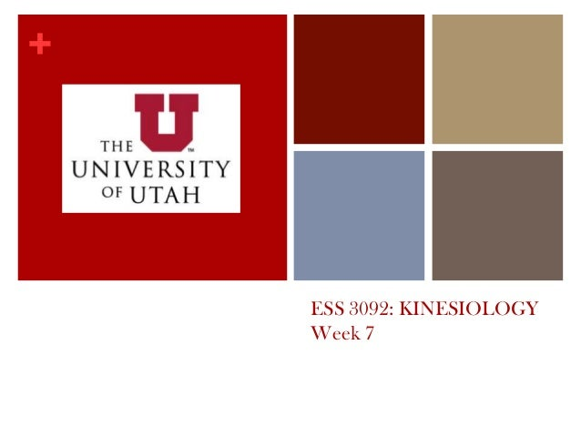 + ESS 3092: KINESIOLOGY Week 7