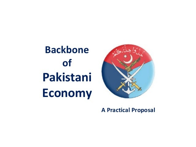 Backbone of Pakistani Economy A Practical Proposal