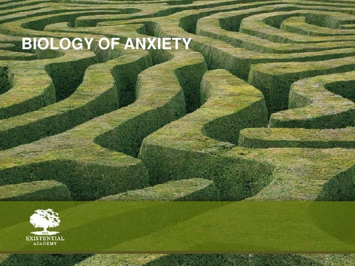 Biology of anxiety<br />