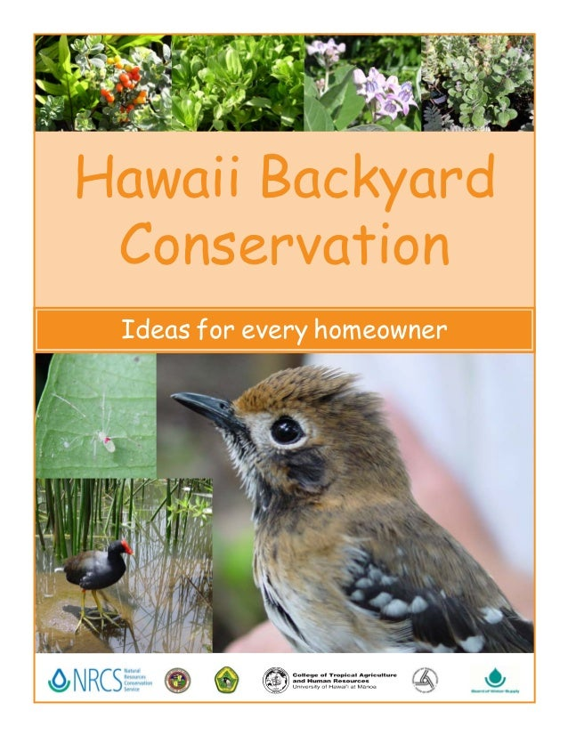 Hawaii Backyard Conservation Ideas for every homeowner