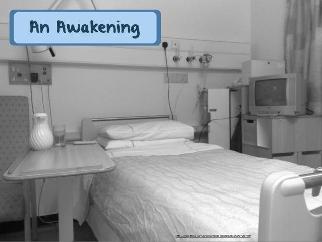 An Awakening               http://www.flickr.com/photos/56087830@N00/2227726759/