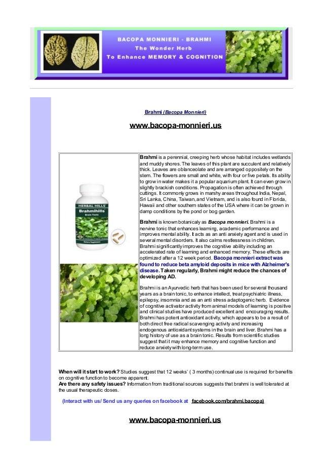 Bacopa Monnieri The Alzheimer's Disease Prevention Food
