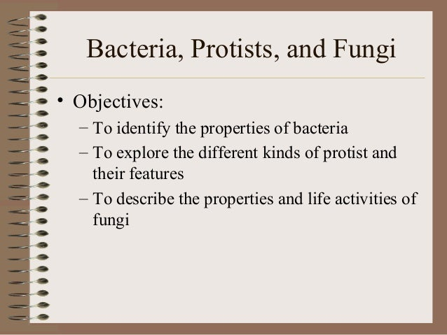 Bacteria, Protists, and Fungi• Objectives:  – To identify the properties of bacteria  – To explore the different kinds of ...